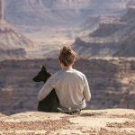 Cómo viajar con tu mascota en vacaciones