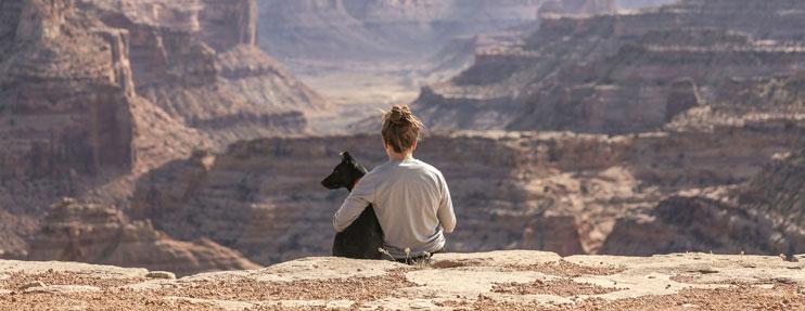 viajar con tu mascota en vacaciones